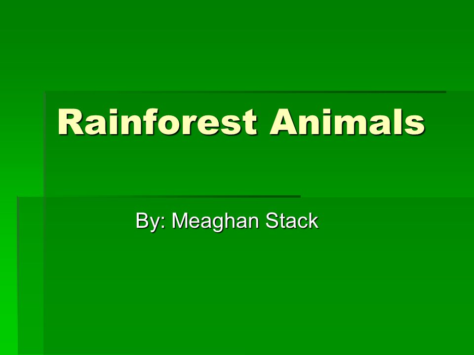 Objectives  You will be able to:  Name at least five different animals that live in the rainforest.