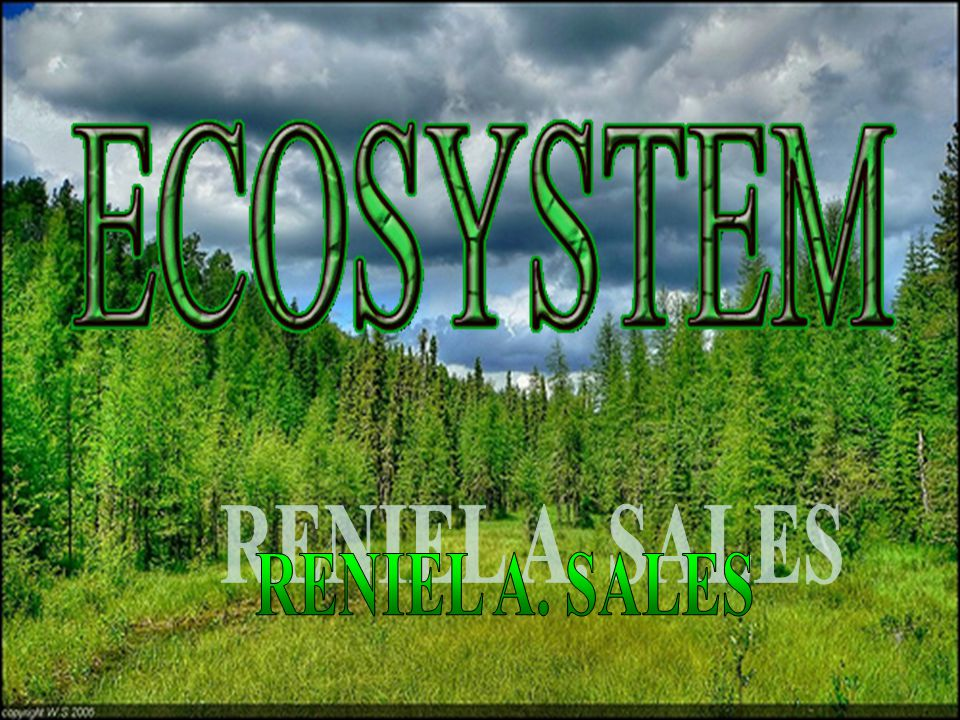 What Is An Ecosystem  An  An ecosystem is a natural unit consisting of all plants, animals and micro-organisms (biotic factors) in an area functioning together with all of the non-living physical (abiotic) factors of the environment.