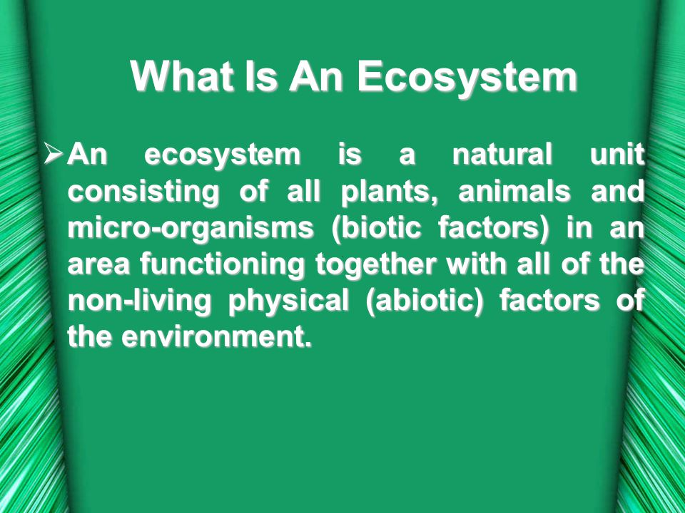  Aquatic  Aquatic systems are those that contain plants and animals that predominantly depend on a significant amount of water to be present for at least part of the year.