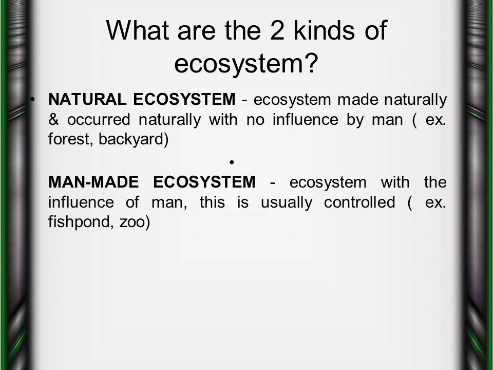 What are the 2 kinds of ecosystem? NATURAL ECOSYSTEM - ecosystem made naturally & occurred naturally with no influence by man ( ex. forest, backyard)