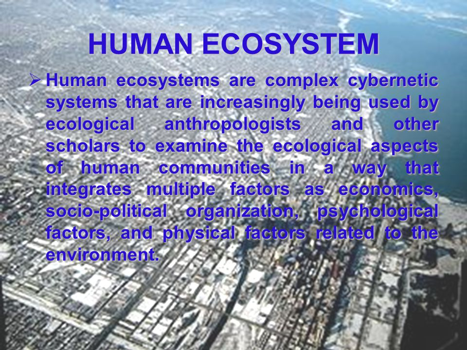 Components of an Ecosystem ABIOTIC COMPONENTSBIOTIC COMPONENTS SunlightPrimary producers TemperatureHerbivores PrecipitationCarnivores Water or moistureOmnivores Soil or water chemistry (e.g., P, NH 4 +) Detritivores etc.