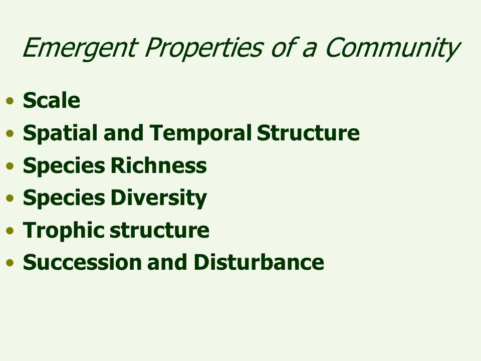 Emergent Properties of a Community Scale Spatial and Temporal Structure Species Richness Species Diversity Trophic structure Succession and Disturbanc