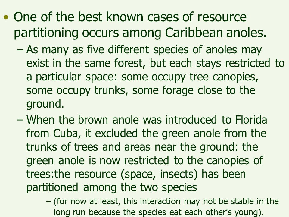One of the best known cases of resource partitioning occurs among Caribbean anoles. –As many as five different species of anoles may exist in the same