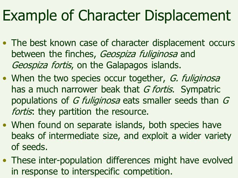 Example of Character Displacement The best known case of character displacement occurs between the finches, Geospiza fuliginosa and Geospiza fortis, o
