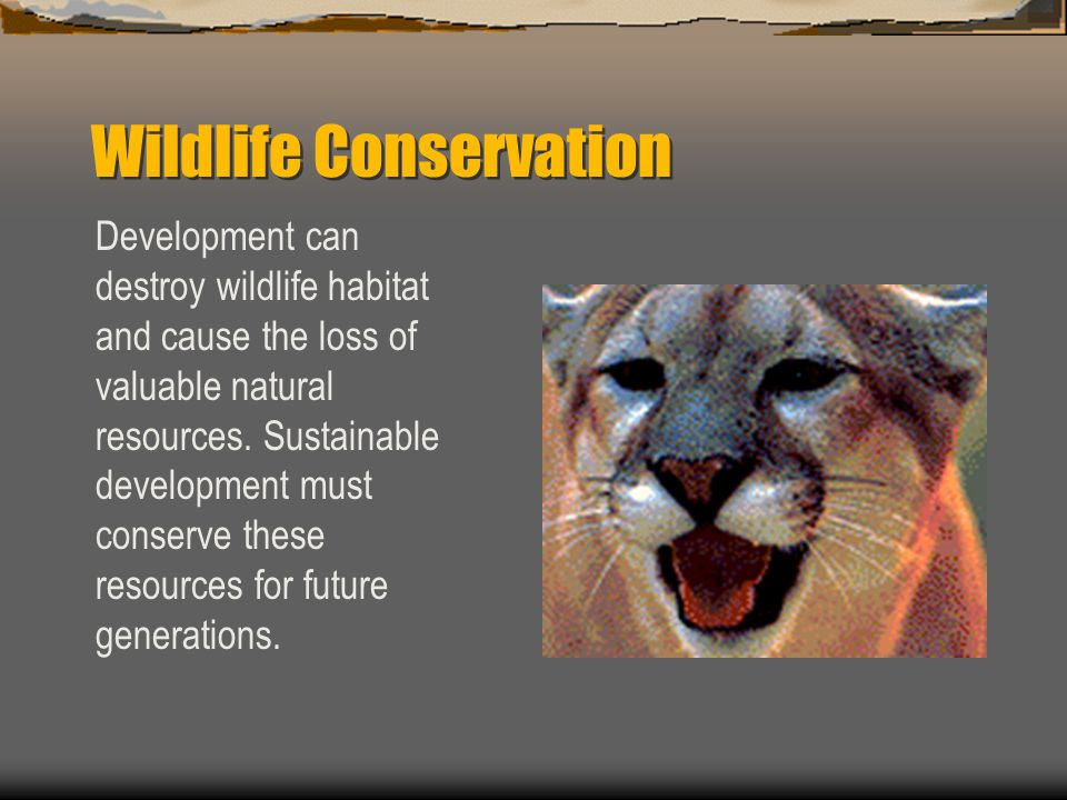 Wildlife Conservation Development can destroy wildlife habitat and cause the loss of valuable natural resources.