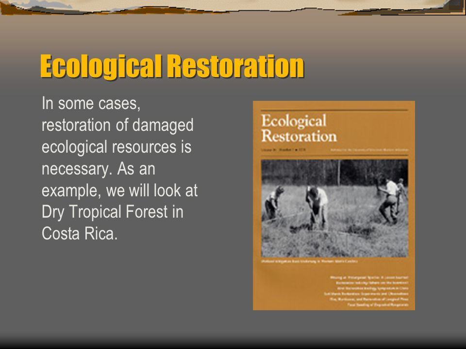 Ecological Restoration In some cases, restoration of damaged ecological resources is necessary.