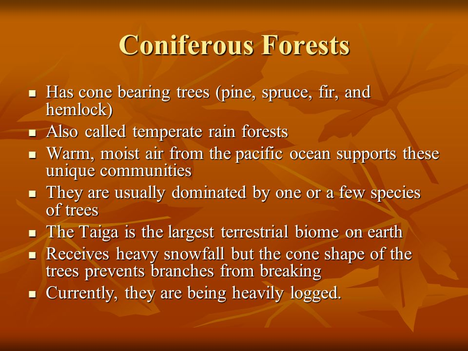 Coniferous Forests Has cone bearing trees (pine, spruce, fir, and hemlock) Has cone bearing trees (pine, spruce, fir, and hemlock) Also called temperate rain forests Also called temperate rain forests Warm, moist air from the pacific ocean supports these unique communities Warm, moist air from the pacific ocean supports these unique communities They are usually dominated by one or a few species of trees They are usually dominated by one or a few species of trees The Taiga is the largest terrestrial biome on earth The Taiga is the largest terrestrial biome on earth Receives heavy snowfall but the cone shape of the trees prevents branches from breaking Receives heavy snowfall but the cone shape of the trees prevents branches from breaking Currently, they are being heavily logged.