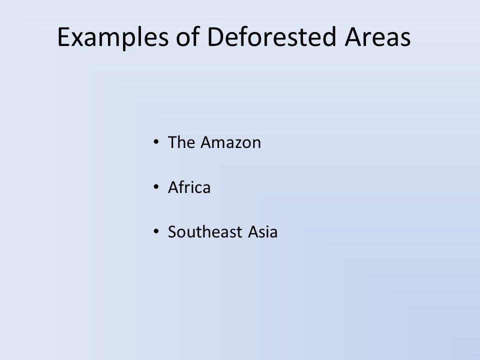 Examples of Deforested Areas The Amazon Africa Southeast Asia