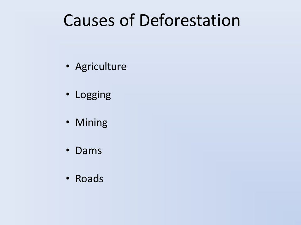 Causes of Deforestation Agriculture Logging Mining Dams Roads