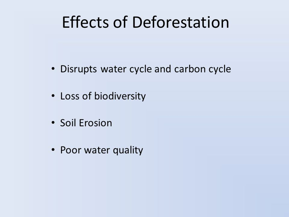 Effects of Deforestation Disrupts water cycle and carbon cycle Loss of biodiversity Soil Erosion Poor water quality