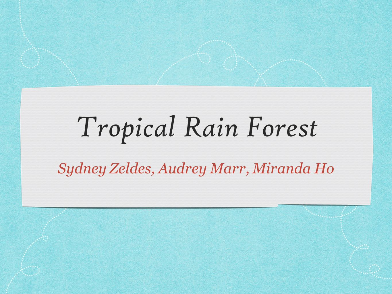 RAINFOREST ALLIANCE Tropical Rainforest: luscious, warm & exotic Every forest counts