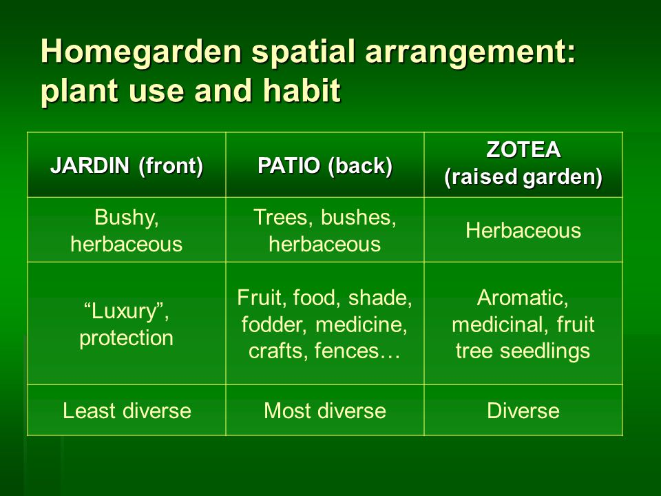Homegarden spatial arrangement: plant use and habit JARDIN (front) PATIO (back) ZOTEA (raised garden) Bushy, herbaceous Trees, bushes, herbaceous Herbaceous Luxury , protection Fruit, food, shade, fodder, medicine, crafts, fences… Aromatic, medicinal, fruit tree seedlings Least diverseMost diverseDiverse