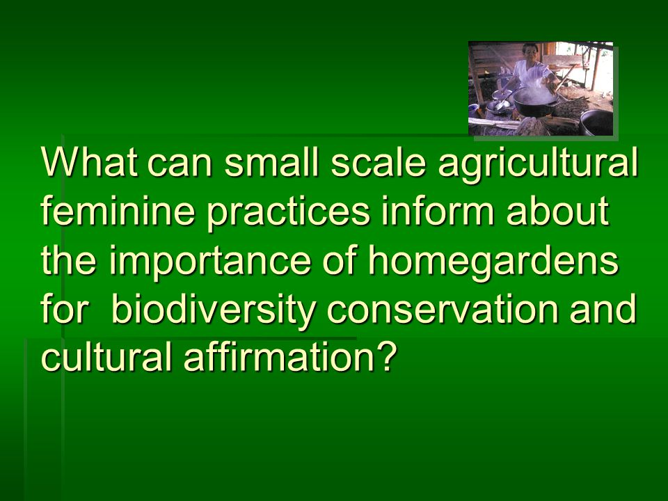 What can small scale agricultural feminine practices inform about the importance of homegardens for biodiversity conservation and cultural affirmation?