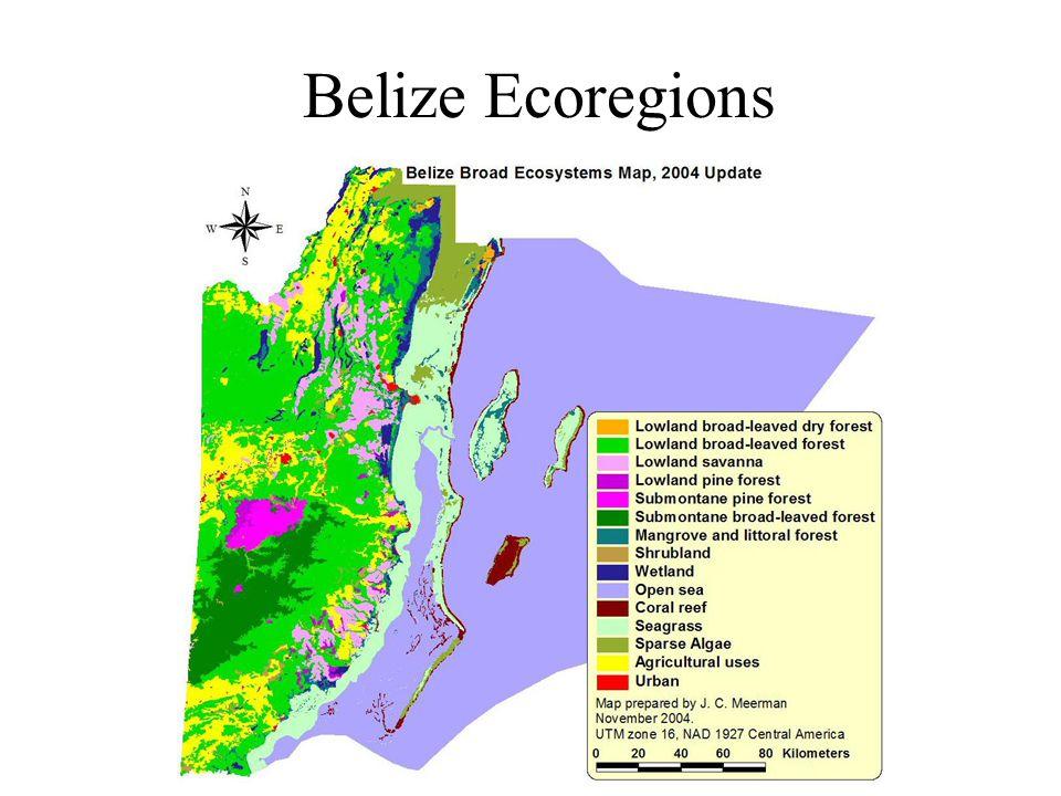 Belize Ecoregions
