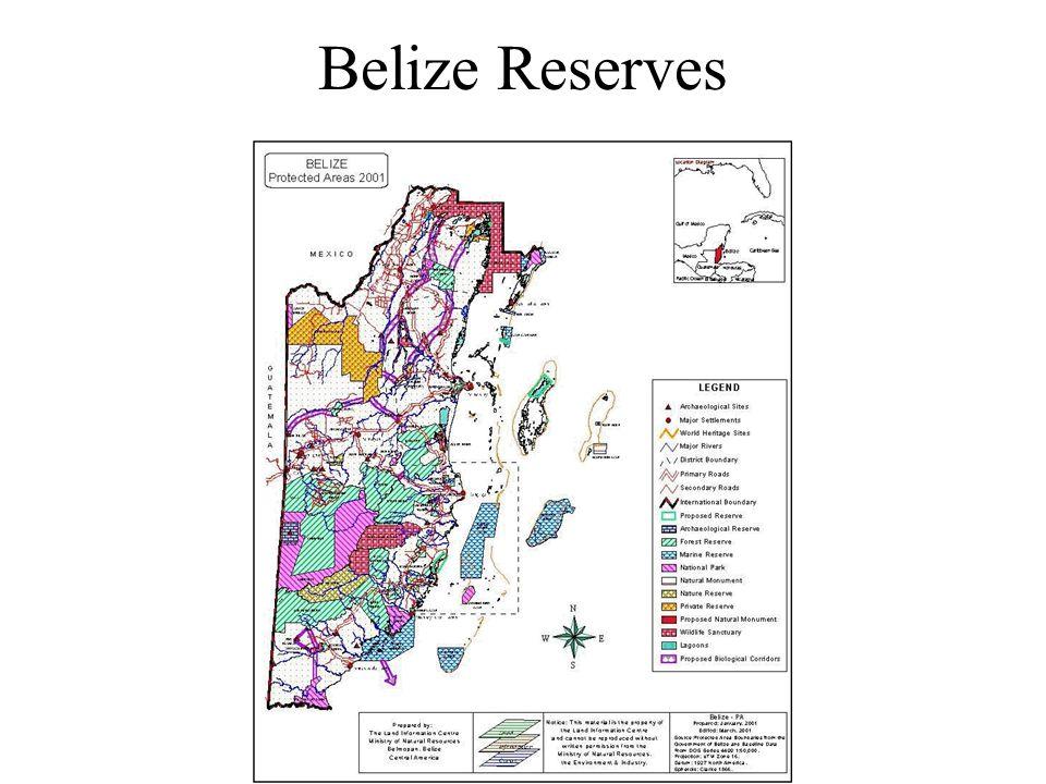 Belize Reserves
