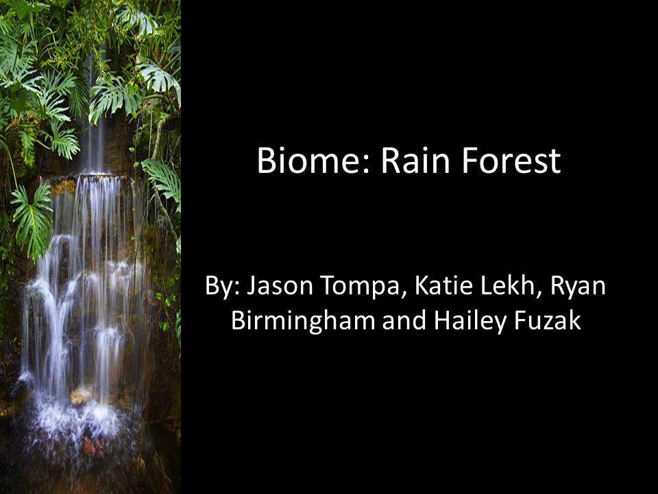 Biome: Rain Forest By: Jason Tompa, Katie Lekh, Ryan Birmingham and Hailey Fuzak