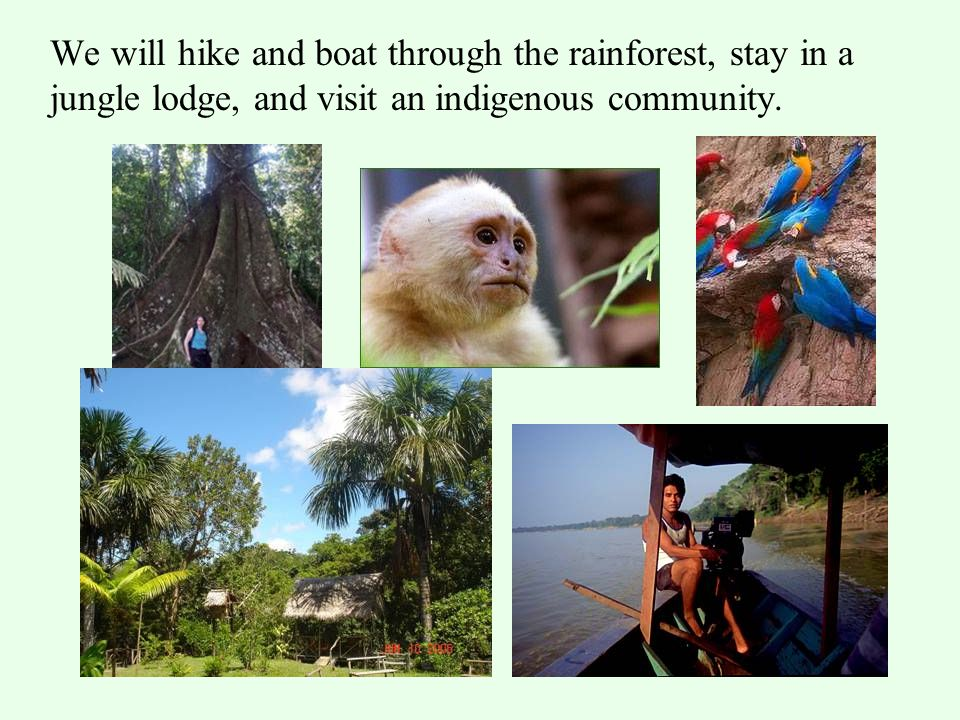 We will hike and boat through the rainforest, stay in a jungle lodge, and visit an indigenous community.