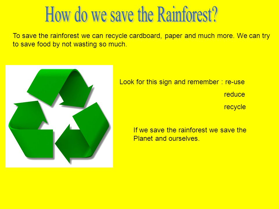 To save the rainforest we can recycle cardboard, paper and much more.