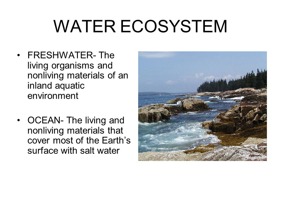 WATER ECOSYSTEM FRESHWATER- The living organisms and nonliving materials of an inland aquatic environment OCEAN- The living and nonliving materials th