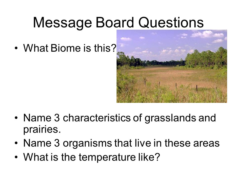 Message Board Questions What Biome is this? Name 3 characteristics of grasslands and prairies. Name 3 organisms that live in these areas What is the t