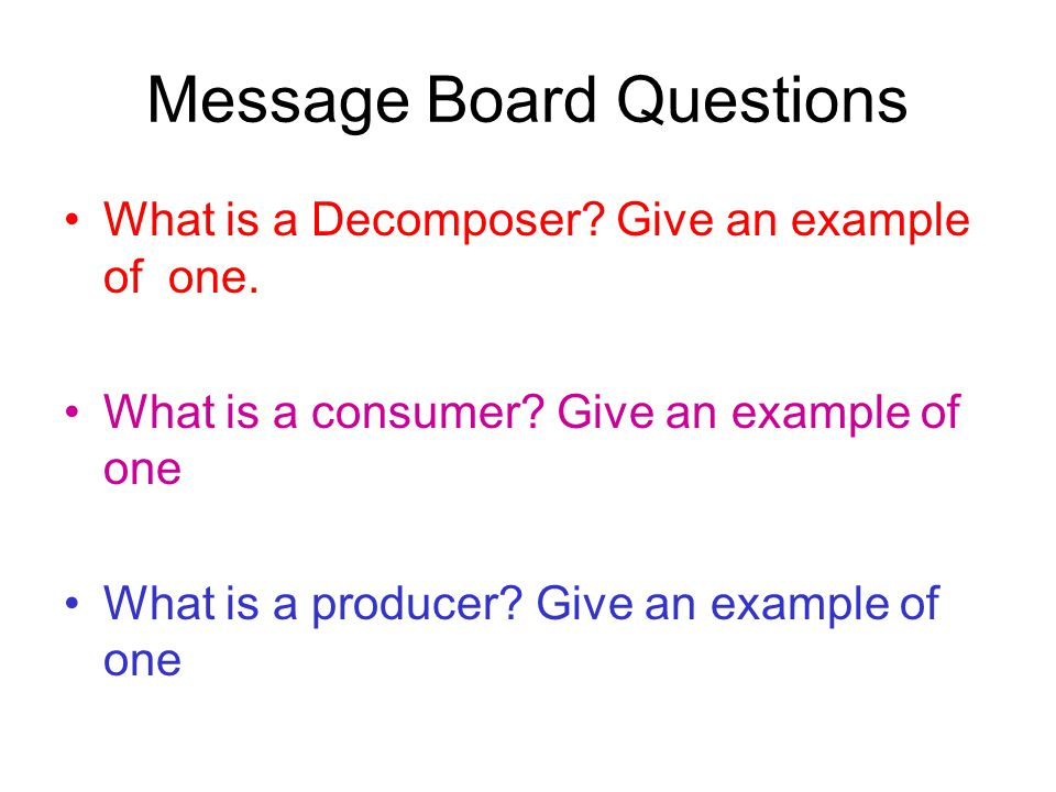Message Board Questions What is a Decomposer? Give an example of one. What is a consumer? Give an example of one What is a producer? Give an example o