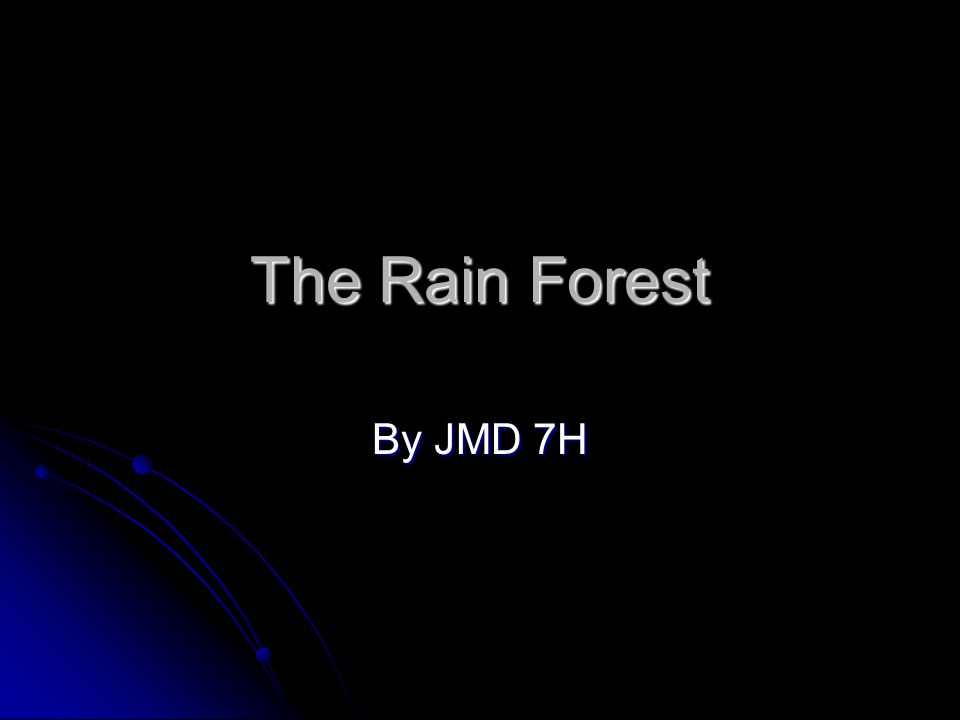 The Rain Forest By JMD 7H
