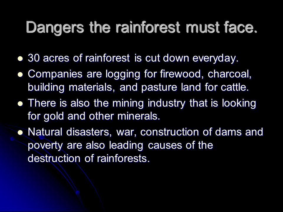 Dangers the rainforest must face. 30 acres of rainforest is cut down everyday.