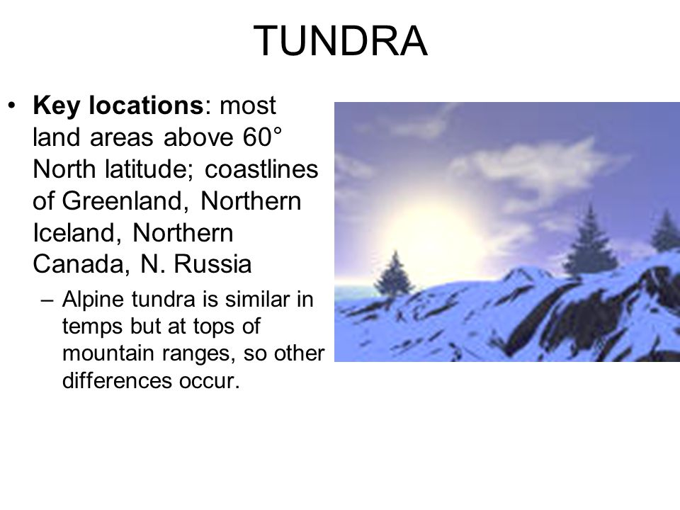TUNDRA Key locations: most land areas above 60° North latitude; coastlines of Greenland, Northern Iceland, Northern Canada, N. Russia –Alpine tundra i