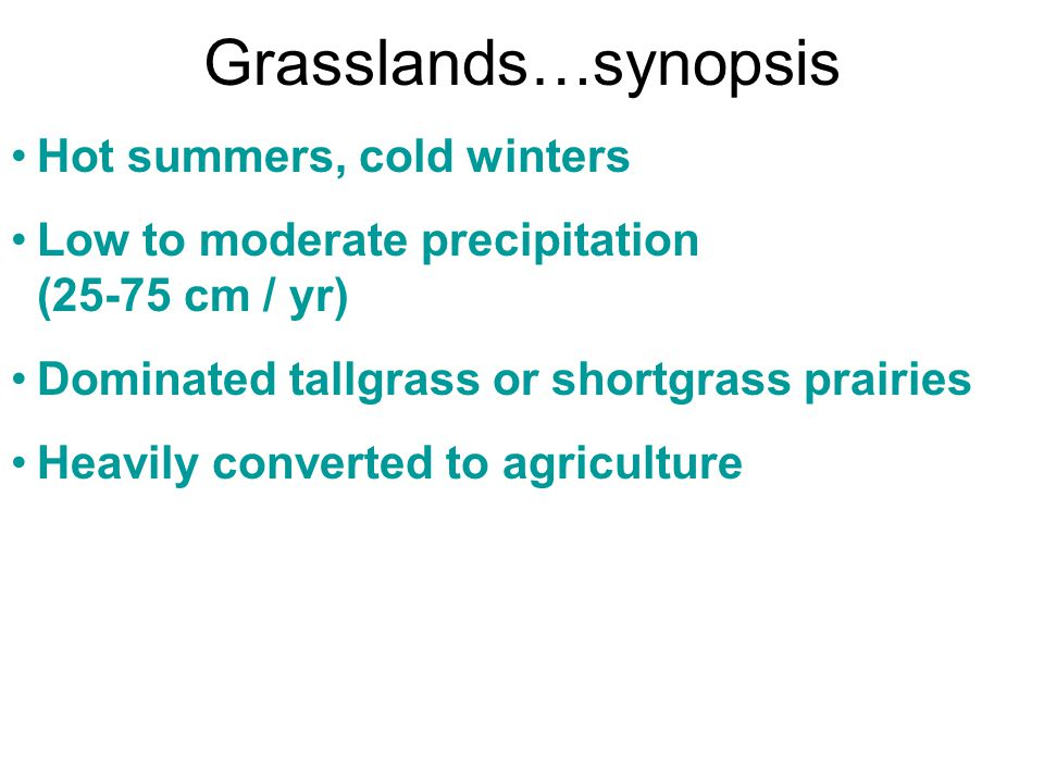 Grasslands…synopsis Hot summers, cold winters Low to moderate precipitation (25-75 cm / yr) Dominated tallgrass or shortgrass prairies Heavily convert