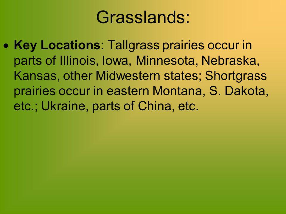 Grasslands:  Key Locations: Tallgrass prairies occur in parts of Illinois, Iowa, Minnesota, Nebraska, Kansas, other Midwestern states; Shortgrass pra