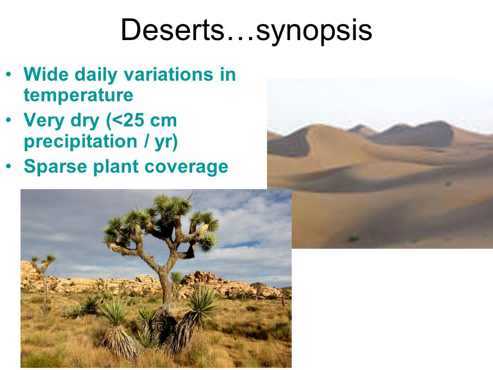 Deserts…synopsis Wide daily variations in temperature Very dry (<25 cm precipitation / yr) Sparse plant coverage