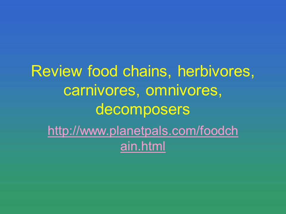 Review food chains, herbivores, carnivores, omnivores, decomposers http://www.planetpals.com/foodch ain.html