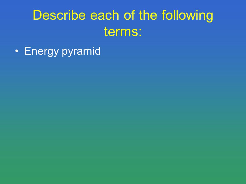 Describe each of the following terms: Energy pyramid