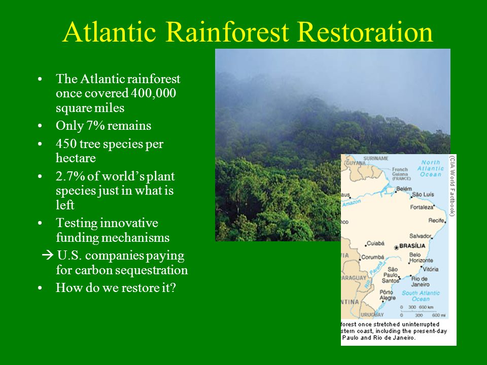 Atlantic Rainforest Restoration The Atlantic rainforest once covered 400,000 square miles Only 7% remains 450 tree species per hectare 2.7% of world's plant species just in what is left Testing innovative funding mechanisms  U.S.