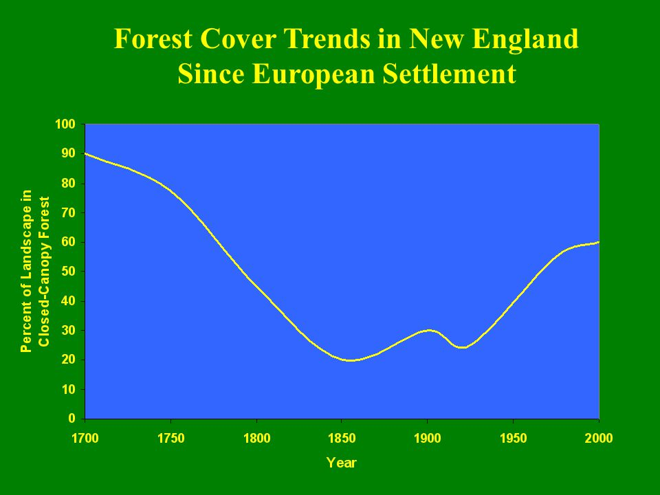 Forest Cover Trends in New England Since European Settlement