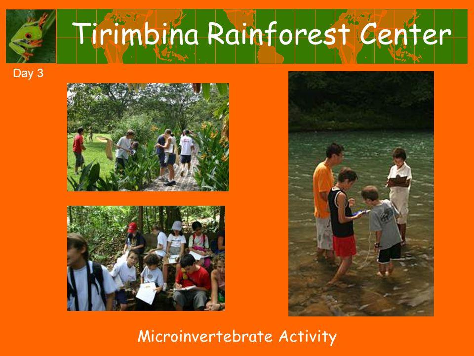Tirimbina Rainforest Center Day 3 Microinvertebrate Activity