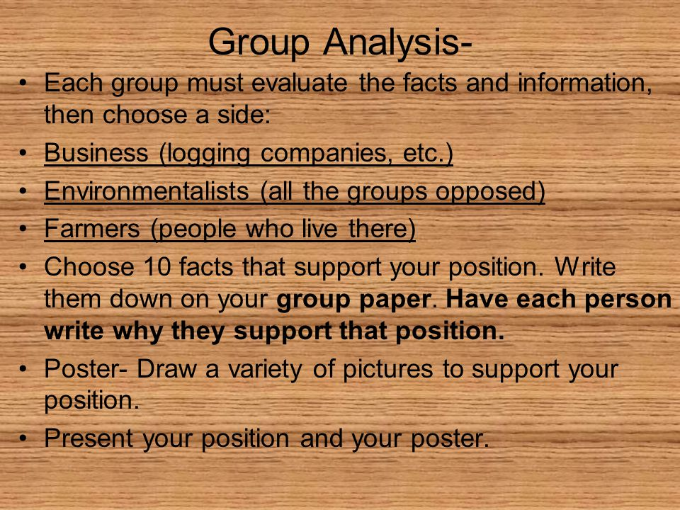 Group Analysis- Each group must evaluate the facts and information, then choose a side: Business (logging companies, etc.) Environmentalists (all the groups opposed) Farmers (people who live there) Choose 10 facts that support your position.