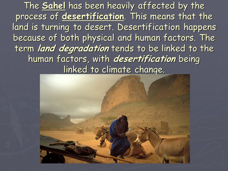 The Sahel has been heavily affected by the process of desertification. This means that the land is turning to desert. Desertification happens because