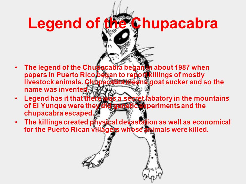Legend of the Chupacabra The legend of the Chupacabra began in about 1987 when papers in Puerto Rico began to report killings of mostly livestock animals.