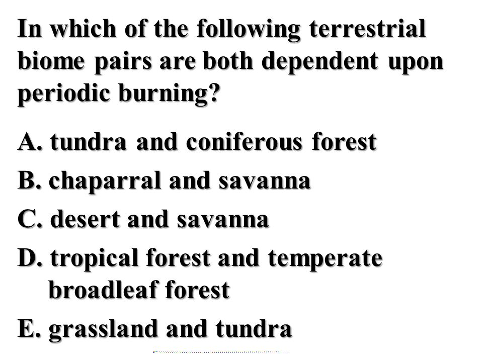 In which of the following terrestrial biome pairs are both dependent upon periodic burning? A. tundra and coniferous forest B. chaparral and savanna C