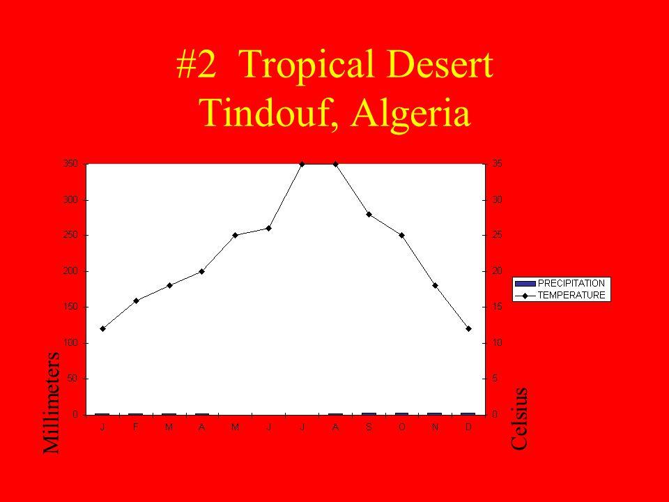 #2 Tropical Desert Tindouf, Algeria Millimeters Celsius
