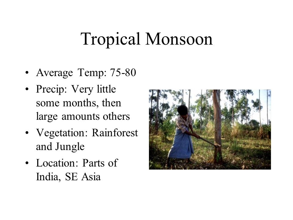 Tropical Monsoon Average Temp: 75-80 Precip: Very little some months, then large amounts others Vegetation: Rainforest and Jungle Location: Parts of India, SE Asia