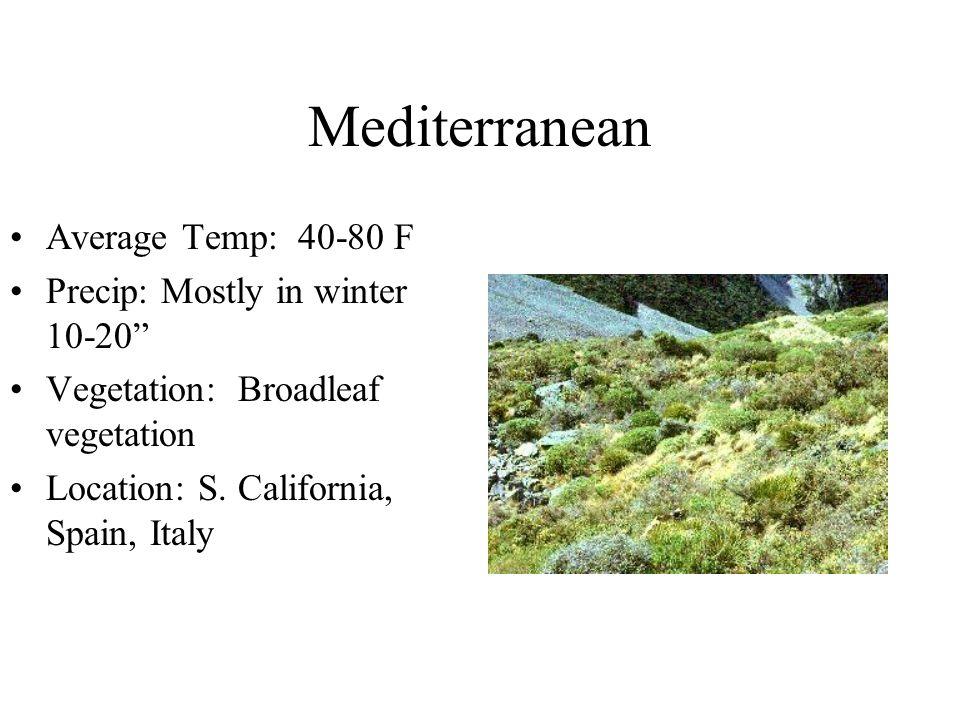 Tropical Steppe Average Temp: 75-80 Precip: Unreliable 10- 20 Vegetation - Short grasses, thorny bushes Location - Colorado, Pakistan, Australia