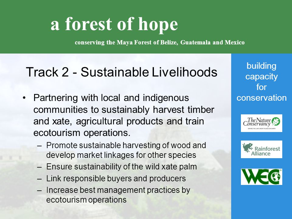 building capacity for conservation a forest of hope conserving the Maya Forest of Belize, Guatemala and Mexico Track 2 - Sustainable Livelihoods Partnering with local and indigenous communities to sustainably harvest timber and xate, agricultural products and train ecotourism operations.