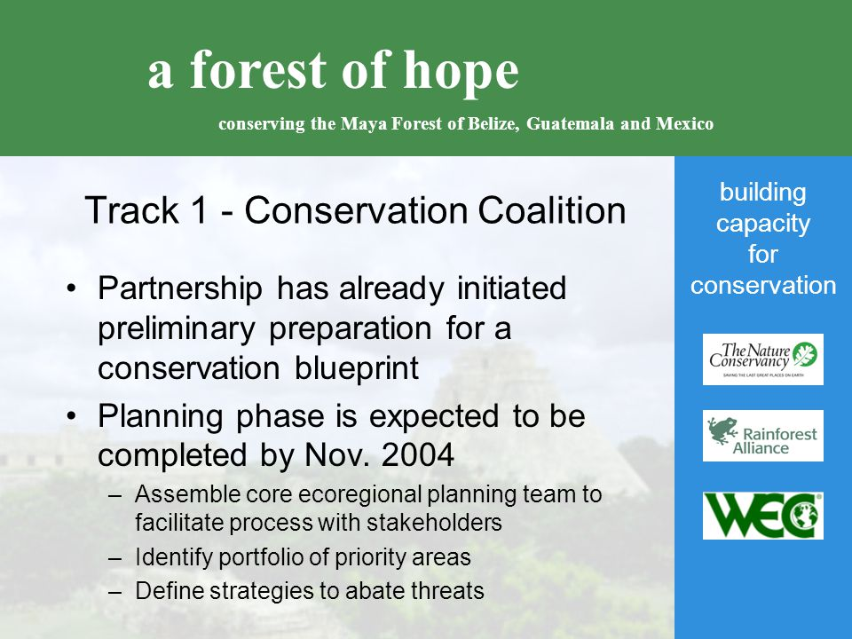 building capacity for conservation a forest of hope conserving the Maya Forest of Belize, Guatemala and Mexico Track 1 - Conservation Coalition Partnership has already initiated preliminary preparation for a conservation blueprint Planning phase is expected to be completed by Nov.