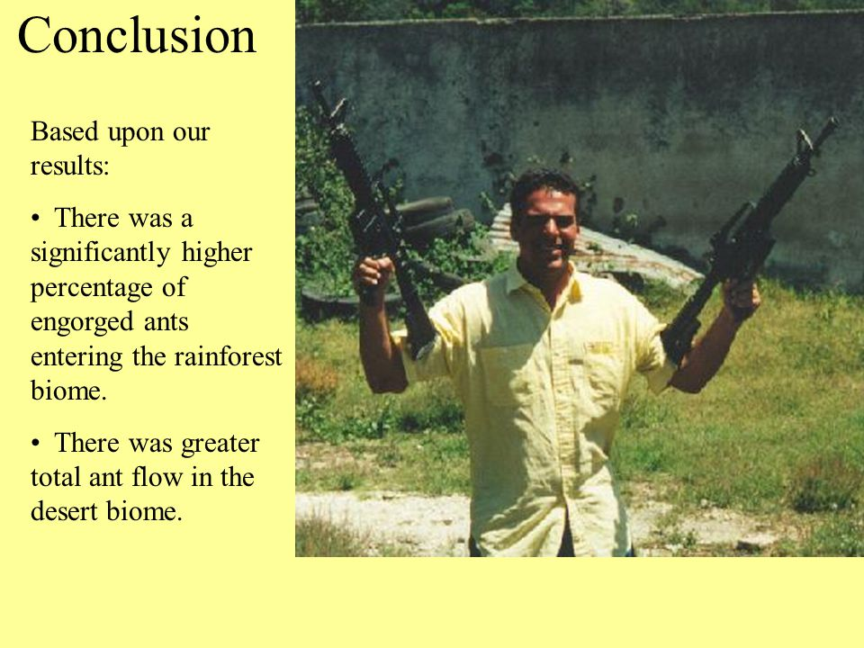 References Danoff-Burg, James.2000.