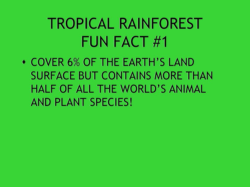 TROPICAL RAINFOREST CLIMATE  HUMIDITY IS BETWEEN 77% AND 88% PRODUCES 40% OF THE WORLDS OXYGEN.