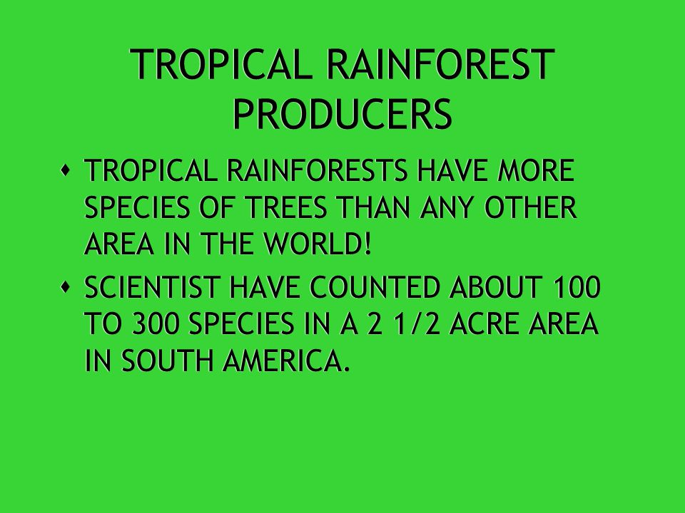 TROPICAL RAINFOREST FUN FACT #1  COVER 6% OF THE EARTH'S LAND SURFACE BUT CONTAINS MORE THAN HALF OF ALL THE WORLD'S ANIMAL AND PLANT SPECIES!
