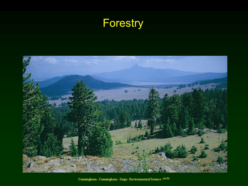 Cunningham - Cunningham - Saigo: Environmental Science 7 th Ed. Forestry