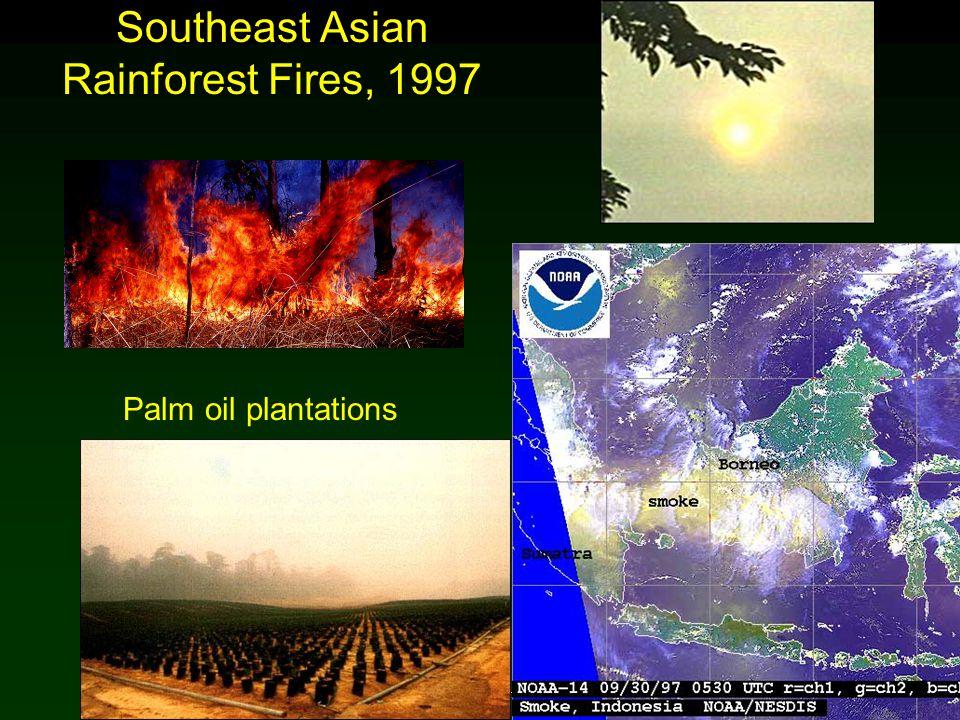 Cunningham - Cunningham - Saigo: Environmental Science 7 th Ed. Southeast Asian Rainforest Fires, 1997 Palm oil plantations